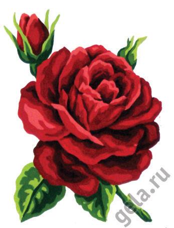 Канва жесткая с рисунком Soulos Красная роза, 20 см х 25 см. 43.10343.103К изнаночной стороне каждой канвы прикреплена бумажная этикетка с указанием артикула, штрих-кода, наименования товара, а также информации о производителе. На канве, помимо мотива, напечатан логотип компании-изготовителя, указан размер готовой работы, канвы и материал, из которого она изготовлена. Также на канве напечатан цветной и цифровой ключ по цветам для классического хлопкового мулине DMC и Anchor, а на этикетке есть цвета Finca Presencia