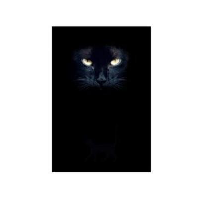 """Дневник для записей Lo Scarabeo """"Глаза Кошки"""". JOU05"""