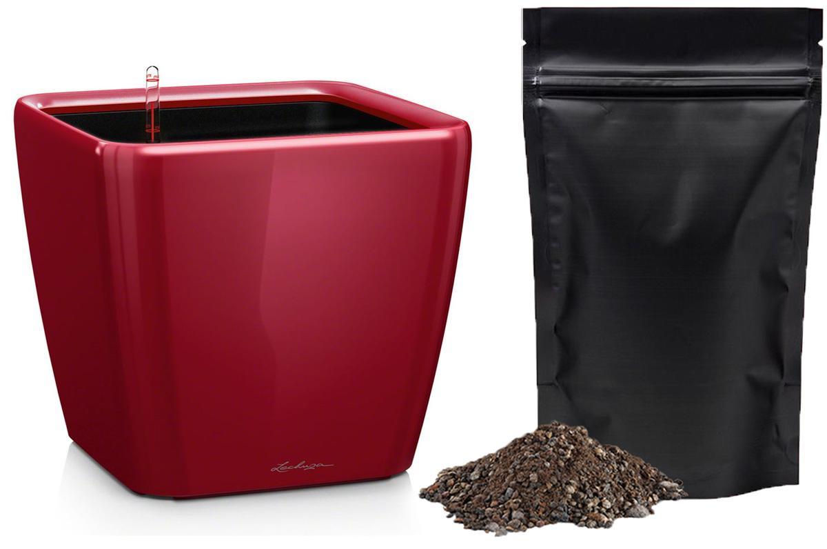 Кашпо с автополивом Lechuza Quadro 28х26 см, красное LS + ПОДАРОК: Универсальный цветочный грунт In-Terra, объем 4 л16147_подарокЭлегантная ручка цвета самого кашпо украшает все наборы Все-в-одном кашпо серии QUADRO. Она не только красиво смотрится, но и обеспечивает возможность легкой замены растений. Особые преимущества: - Запатентованный внутренний горшок - Ручка цвета горшка не только практична, но еще и дополнительно подчеркивает изящный дизайн кашпо
