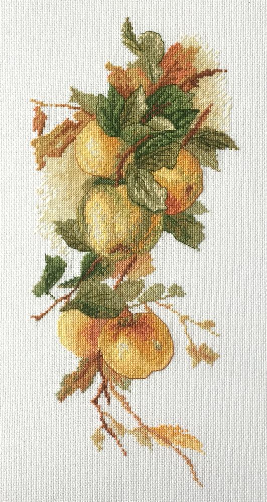 Набор для вышивания Марья Искусница Аромат яблок по рисунку К. Кляйн, 15 см х 35 см. 06.002.4306.002.43Набор для вышивания Аромат яблок по рисунку К. Кляйн 15 х 35 см В наборах Марья Искусница используются только высококачественные материалы - канва Aida (Германия), мулине Finca (Испания).
