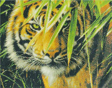 Набор для вышивания Kustomkrafts Ожидающий тигр, 37,4 см х 27,9 см. 3502735027Набор для вышивания Ожидающий тигр, канва Аида 14 белая, мулине, игла, ч/б схема, счетный крест, 37,4х27,9 см. Животные . Вышивать можно без использования пяльцев, крестики на ткани получаются аккуратными и ровными. Вышитую работу рекомендуется стирать вручную в теплой воде. Для закрепления цвета нитей можно добавить в воду для полоскания уксусную эссенцию (1 ст.ложку на 5 л. воды). Не отжимать. Гладить с изнаночной стороны через влажную ткань.