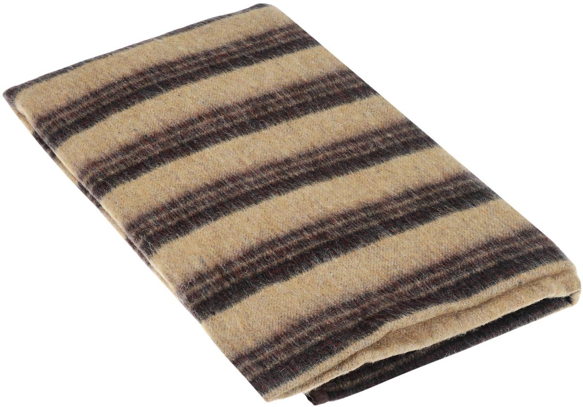 Одеяло полушерстяное Сукно Легкость прикосновений, 140 х 205 см14у44-тяПолушерстяное одеяло Сукно Легкость прикосновений изготовлено из шерсти с добавлением материала ПАН (акриловое волокно) и полиэстера. Отличная терморегуляция и теплоизоляция позволяют использовать его и зимой, и летом. Влага быстро испаряется, что позволяет насладиться идеальным микроклиматом. Такое одеяло обеспечит вам комфорт, и вы забудете о холодах, ведь отлично подобранный состав позволяет наслаждаться необыкновенным теплом и мягкостью ткани. Выполненное в спокойных тонах одеяло не выбьется из общего стиля квартиры. Вы можете преподнести его в дар, и такой презент никогда не будет неуместен. Состав материала: 55% шерсть, 25% ПАН, 20% полиэстер.
