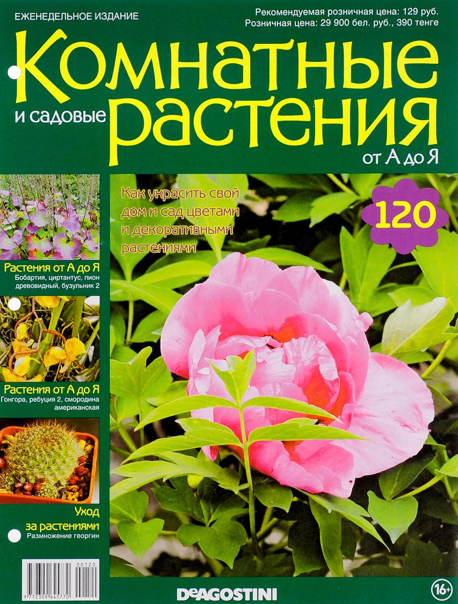 Журнал Комнатные и садовые растения. От А до Я №120VRD120Хотите сделать приятный и полезный подарок людям, увлекающимся цветоводством, или углубить собственные познания в этой сфере? Коллекция журналов Комнатные и садовые растения. От А до Я поможет вам в этом. Из журнала вы узнаете, как украсить свой дом и сад цветами и декоративными растениями. Категория 16+.
