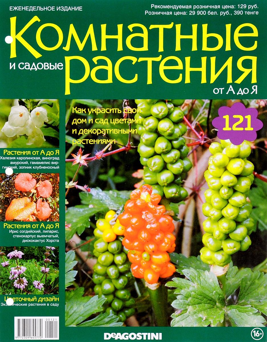 Журнал Комнатные и садовые растения. От А до Я №121VRD121Хотите сделать приятный и полезный подарок людям, увлекающимся цветоводством, или углубить собственные познания в этой сфере? Коллекция журналов Комнатные и садовые растения. От А до Я поможет вам в этом. Из журнала вы узнаете, как украсить свой дом и сад цветами и декоративными растениями. Категория 16+.