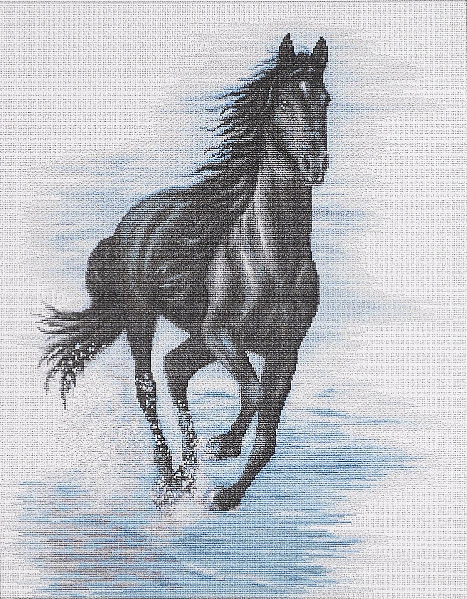 Набор для вышивания крестом Luca-S Черный конь, 40 х 45 смBM3007Набор для вышивания крестом Luca-S Черный конь поможет создать красивую вышитую картину. Рисунок-вышивка, выполненный на канве, выглядит стильно и модно. Вышивание отвлечет вас от повседневных забот и превратится в увлекательное занятие! Работа, сделанная своими руками, не только украсит интерьер дома, придав ему уют и оригинальность, но и будет отличным подарком для друзей и близких! Набор содержит все необходимые материалы для вышивки на канве в технике счетный крест. В набор входит: - канва Aida Zweigart №18 (белого цвета), - мулине Madeira - 100% мерсеризованный хлопок (21 цвет), - черно-белая символьная схема, - инструкция на русском языке, - игла. Размер готовой работы: 40 х 45 см. Размер канвы: 57 х 51,5 см.
