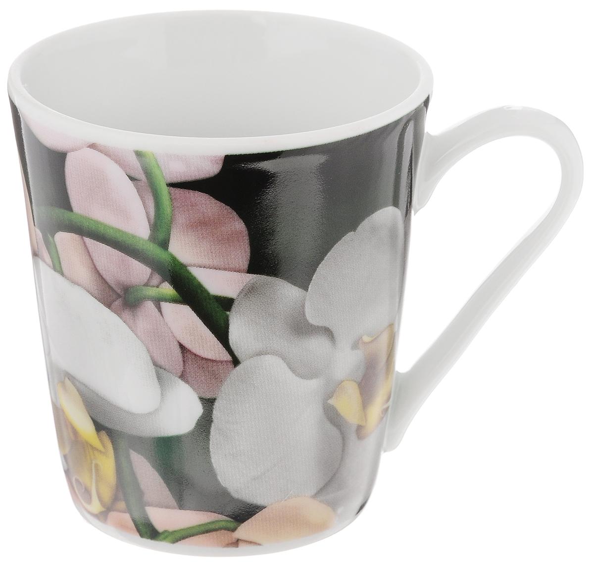 Кружка Классик. Орхидея, цвет: зеленый, серый, 300 мл3С0493_зеленый, серыйКружка Классик. Орхидея изготовлена из высококачественного фарфора. Изделие оформлено красочным цветочным рисунком и покрыто превосходной глазурью. Изысканная кружка прекрасно оформит стол к чаепитию и станет его неизменным атрибутом. Диаметр кружки (по верхнему краю): 8,5 см. Высота стенок: 9,5 см.
