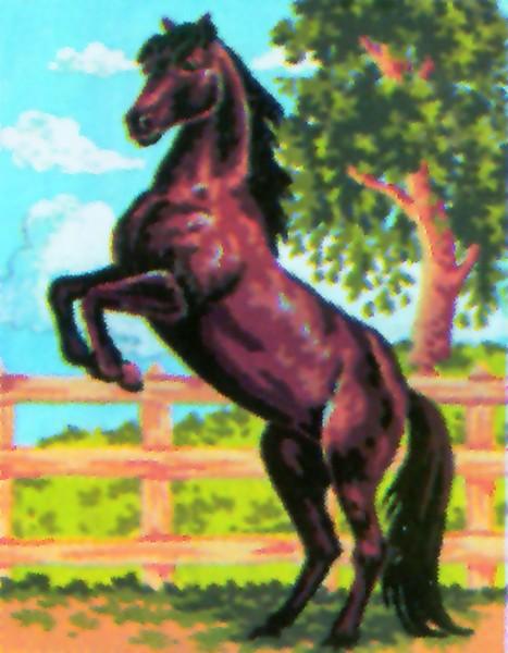Канва с нанесенным рисунком Collection DArt, 20 х 25 см. 30833083