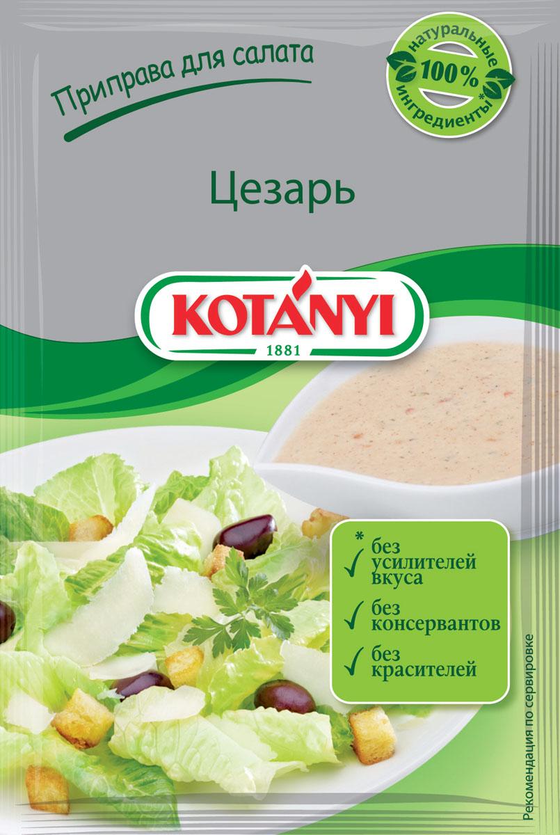 Kotanyi Для салата цезарь, 13 г