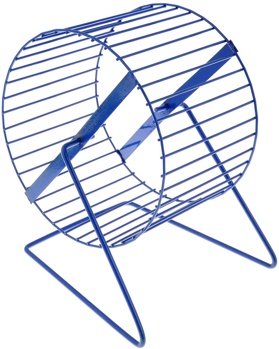 Колесо для грызунов ЗооМарк, цвет: синий, диаметр 16 смD -16_синийКолесо для грызунов ЗооМарк, выполненное из прочного металла, очень удобное и бесшумное. Поместив его в клетку, вы обеспечите своему питомцу необходимую физическую активность. Предназначено для хомяков и мышей. Диаметр колеса: 16 см. Высота колеса: 18 см.