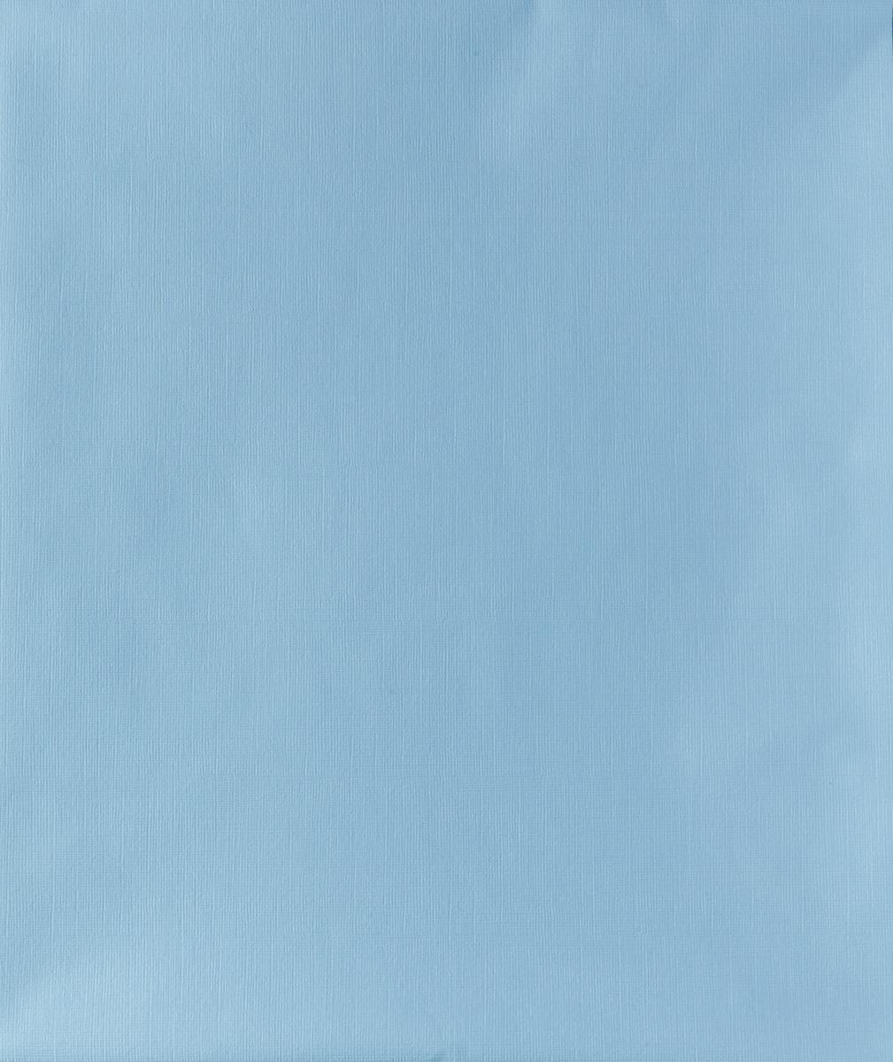 Колорит Клеенка подкладная без окантовки цвет голубой 50 х 70 см0052_голубойКлеенка подкладная с ПВХ покрытием Колорит предназначена для санитарно-гигиенических целей в качестве подкладного материала в медицинской практике и в домашних условиях. ПВХ покрытие влагонепроницаемо и обладает эффектом теплоотдачи, что исключает эффект холодного прикосновения. Микропористая структура поливинилхлоридного покрытия способствует профилактике пролежней и трофических проявлений.