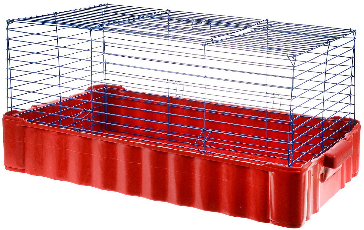 Клетка для кролика ЗооМарк, цвет: красный поддон, синяя решетка, 79 х 47 х 48 см640_красный, синийКлассическая клетка ЗооМарк со сплошным дном станет уединенным личным пространством и уютным домиком для кролика. Изделие выполнено из металла и пластика. Клетка надежно закрывается на защелки. Легко чистится. Для более удобной транспортировки клетку можно сложить.