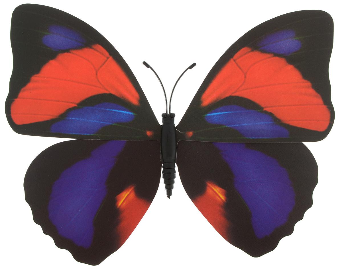 Фигура садовая Village people Тропическая бабочка, с магнитом, цвет: черный, красный, фиолетовый (20), 12 х 8 см68610_20Ветряная фигурка Village People Тропическая бабочка, изготовленная из ПВХ и магнита, это не только красивое украшение, но и замечательный способ отпугнуть птиц с грядок. Изделие выполнено в виде бабочки и оснащено магнитом, с помощью которого вы сможете поместить изделие в любом удобном для вас месте. Яркий дизайн изделия оживит ландшафт сада.