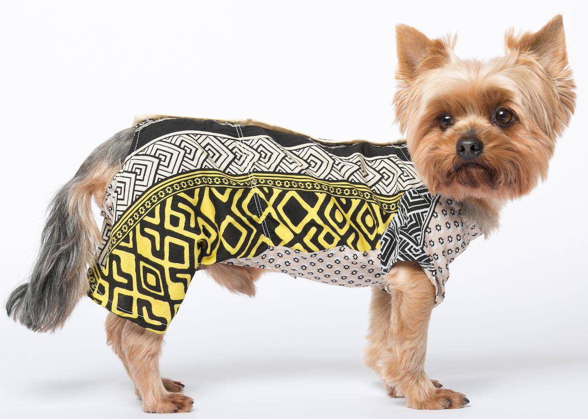Комбинезон для собак Yoriki Зевс, для мальчика. 385-11. Размер S385-11Обхват шеи: 22 см. Обхват груди: 32 см. Длина спины: 20 см.