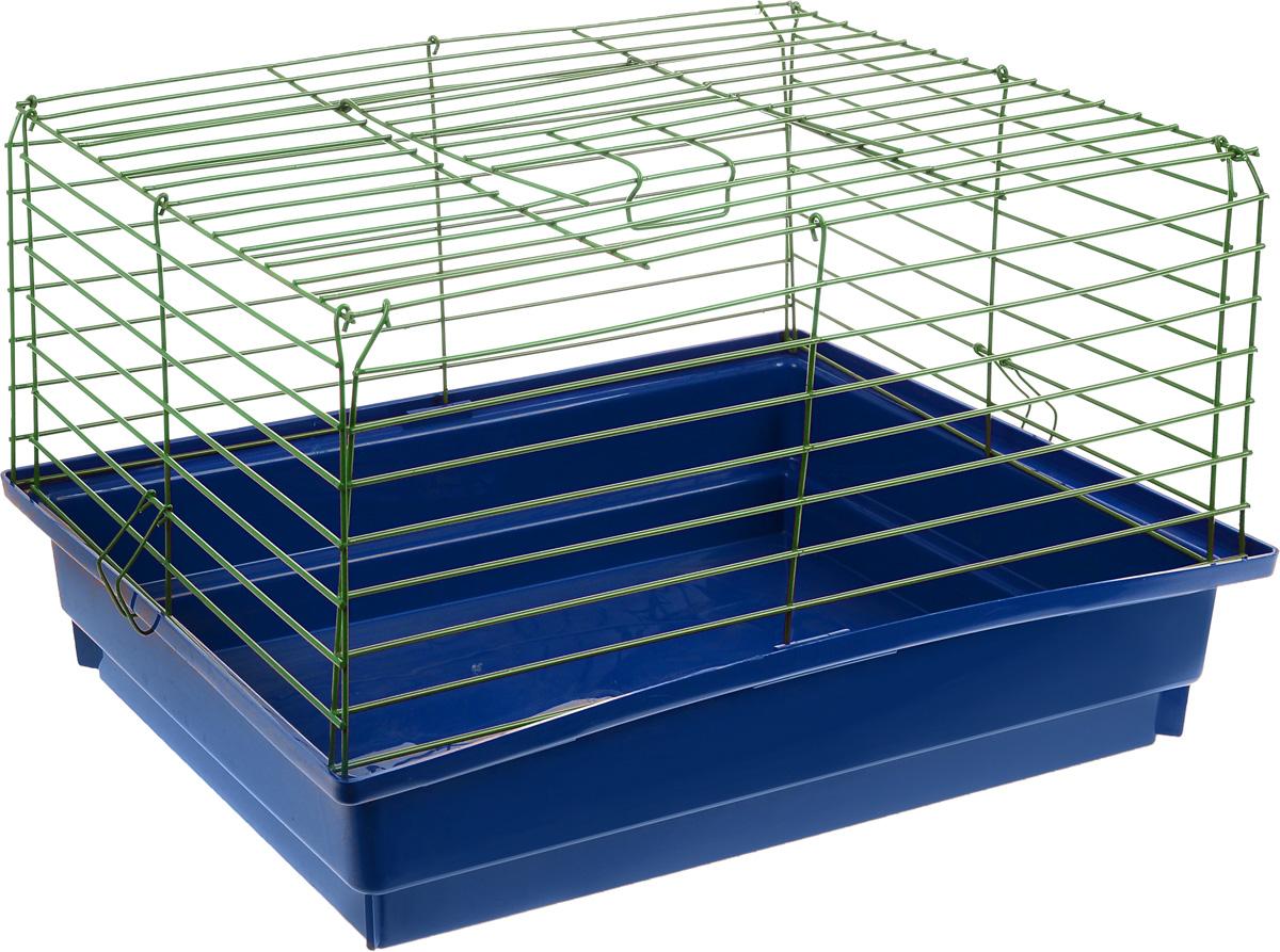 Клетка для кролика ЗооМарк, цвет: синий поддон, зеленая решетка, 60 х 40 х 35 см620_синий, зеленыйКлассическая клетка ЗооМарк со сплошным дном станет уединенным личным пространством и уютным домиком для кролика. Изделие выполнено из металла и пластика. Клетка надежно закрывается на защелки. Легко чистится. Для более удобной транспортировки клетку можно сложить.
