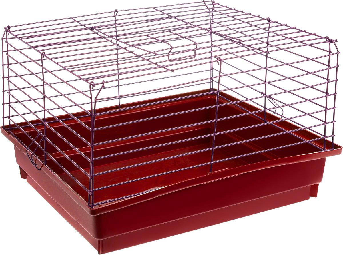 Клетка для кролика ЗооМарк, цвет: красный поддон, розовая решетка, 50 х 35 х 30 см610_красный, малиновыйКлассическая клетка ЗооМарк со сплошным дном станет уединенным личным пространством и уютным домиком для кролика. Изделие выполнено из металла и пластика. Клетка надежно закрывается на защелки. Легко чистится. Для более удобной транспортировки клетку можно сложить.