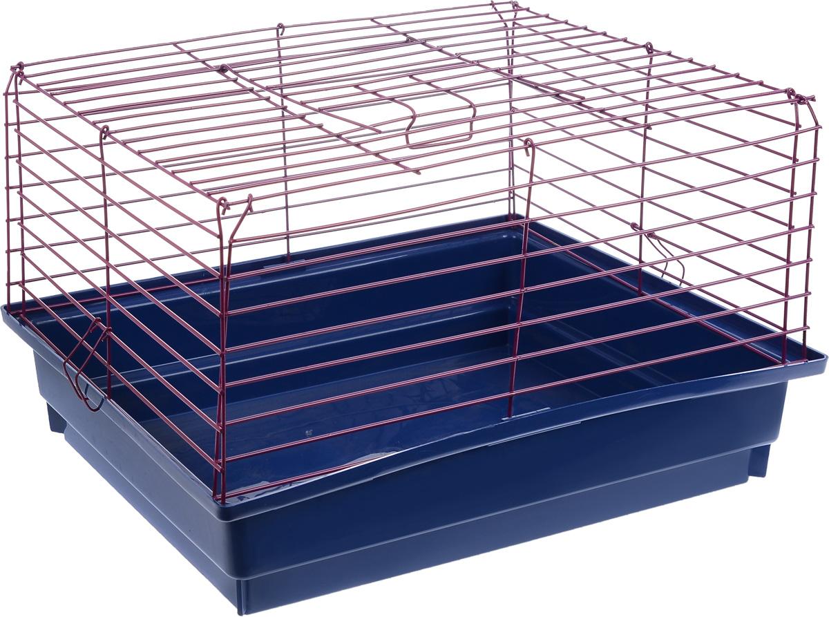 Клетка для кролика ЗооМарк, цвет: синий поддон, малиновая решетка, 50 х 35 х 30 см610_синий, малиновыйКлассическая клетка ЗооМарк со сплошным дном станет уединенным личным пространством и уютным домиком для кролика. Изделие выполнено из металла и пластика. Клетка надежно закрывается на защелки. Легко чистится. Для более удобной транспортировки клетку можно сложить.
