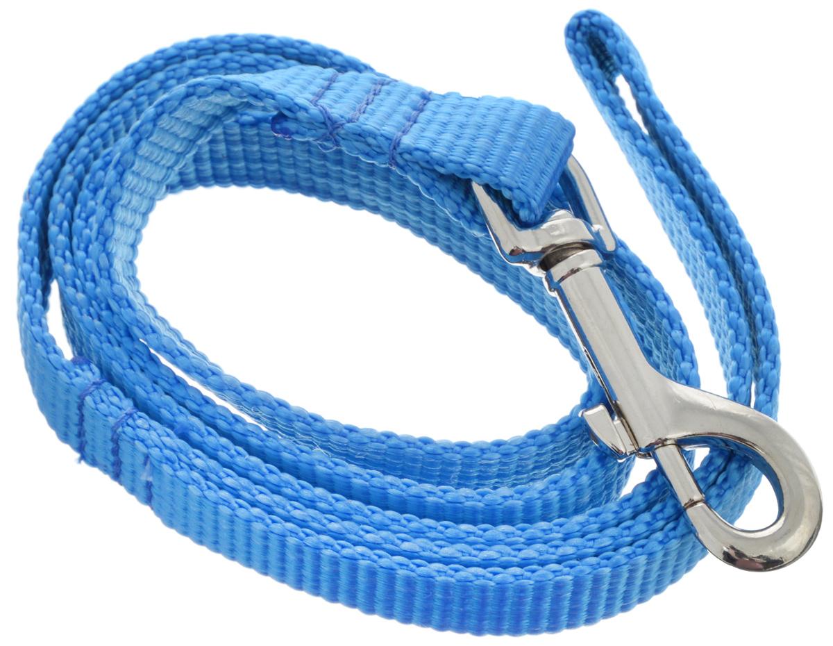 Поводок капроновый для собак Аркон, цвет: синий, ширина 2 см, длина 1 мпк1м20_синийПоводок для собак Аркон изготовлен из высококачественного цветного капрона и снабжен металлическим карабином. Изделие отличается не только исключительной надежностью и удобством, но и привлекательным современным дизайном. Поводок - необходимый аксессуар для собаки. Ведь в опасных ситуациях именно он способен спасти жизнь вашему любимому питомцу. Иногда нужно ограничивать свободу своего четвероногого друга, чтобы защитить его или себя от неприятностей на прогулке. Длина поводка: 1 м. Ширина поводка: 2 см.