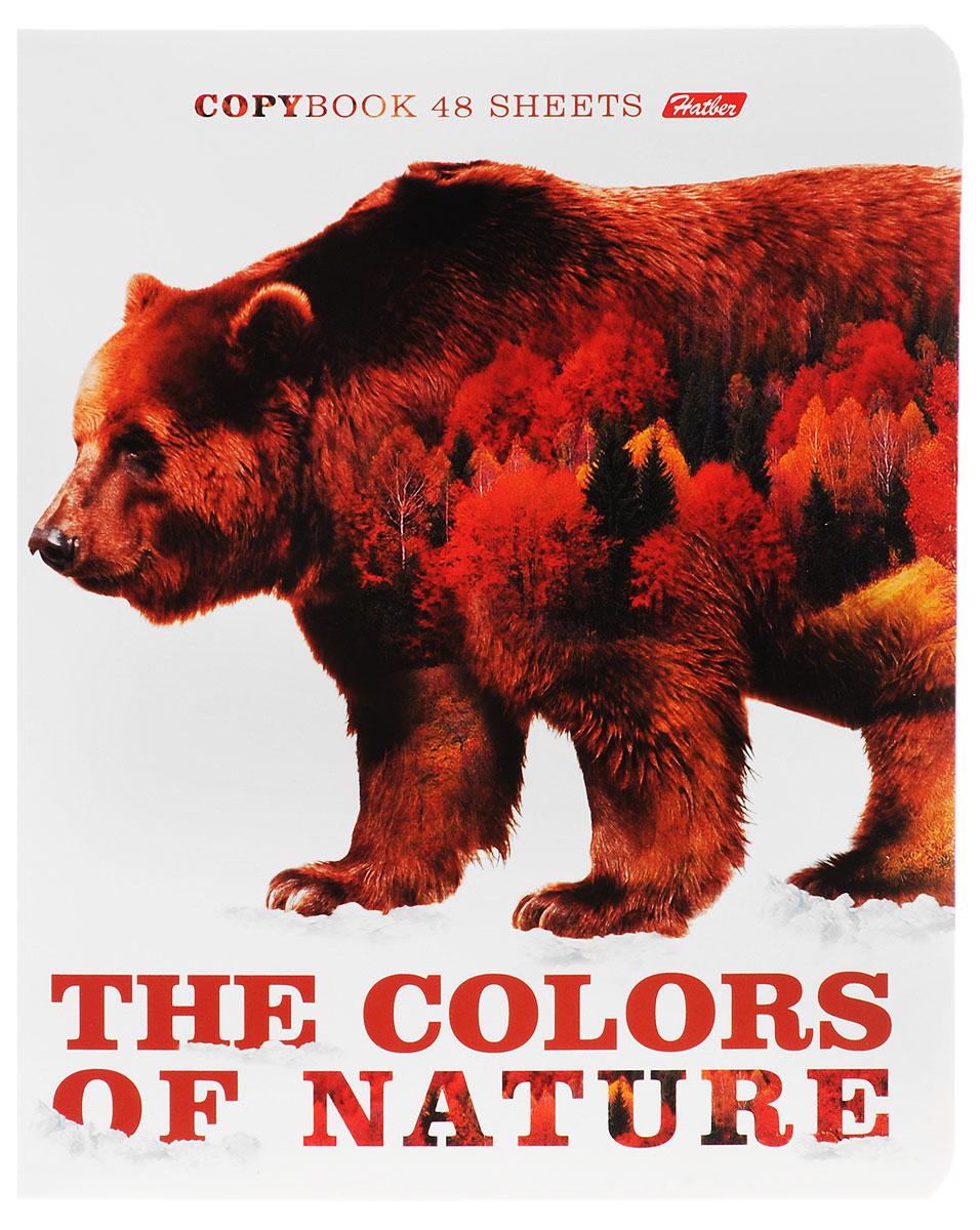 Hatber Тетрадь Медведь 48 листов в клетку48Т5вмВ1_14837Тетрадь Hatber Медведь отлично подойдет для занятий школьнику, студенту или для различных записей. Обложка, выполненная из плотного картона, позволит сохранить тетрадь в аккуратном состоянии на протяжении всего времени использования. Лицевая сторона оформлена изображением бурого медведя и осеннего леса. Внутренний блок тетради, соединенный двумя металлическими скрепками, состоит из 48 листов белой бумаги. Стандартная линовка в клетку голубого цвета дополнена полями, совпадающими с лицевой и оборотной стороны листа.