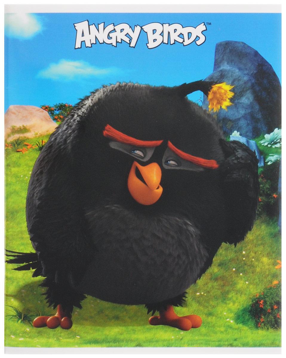 Hatber Тетрадь Бомб 48 листов в клетку48Т5В1_15314Тетрадь Hatber Бомб отлично подойдет для занятий школьнику, студенту, а также для различных записей. Обложка, выполненная из плотного картона, позволит сохранить тетрадь в аккуратном состоянии на протяжении всего времени использования. Обложка оформлена изображением птицы Бомб из известной игры Angry Birds. Внутренний блок тетради, соединенный двумя металлическими скрепками, состоит из 48 листов белой бумаги. Стандартная линовка в клетку голубого цвета дополнена полями, совпадающими с лицевой и оборотной стороны листа. В верхнем углу каждой странички находится разделенное точками место для даты, в нижнем - пустые квадратики для номеров страниц.