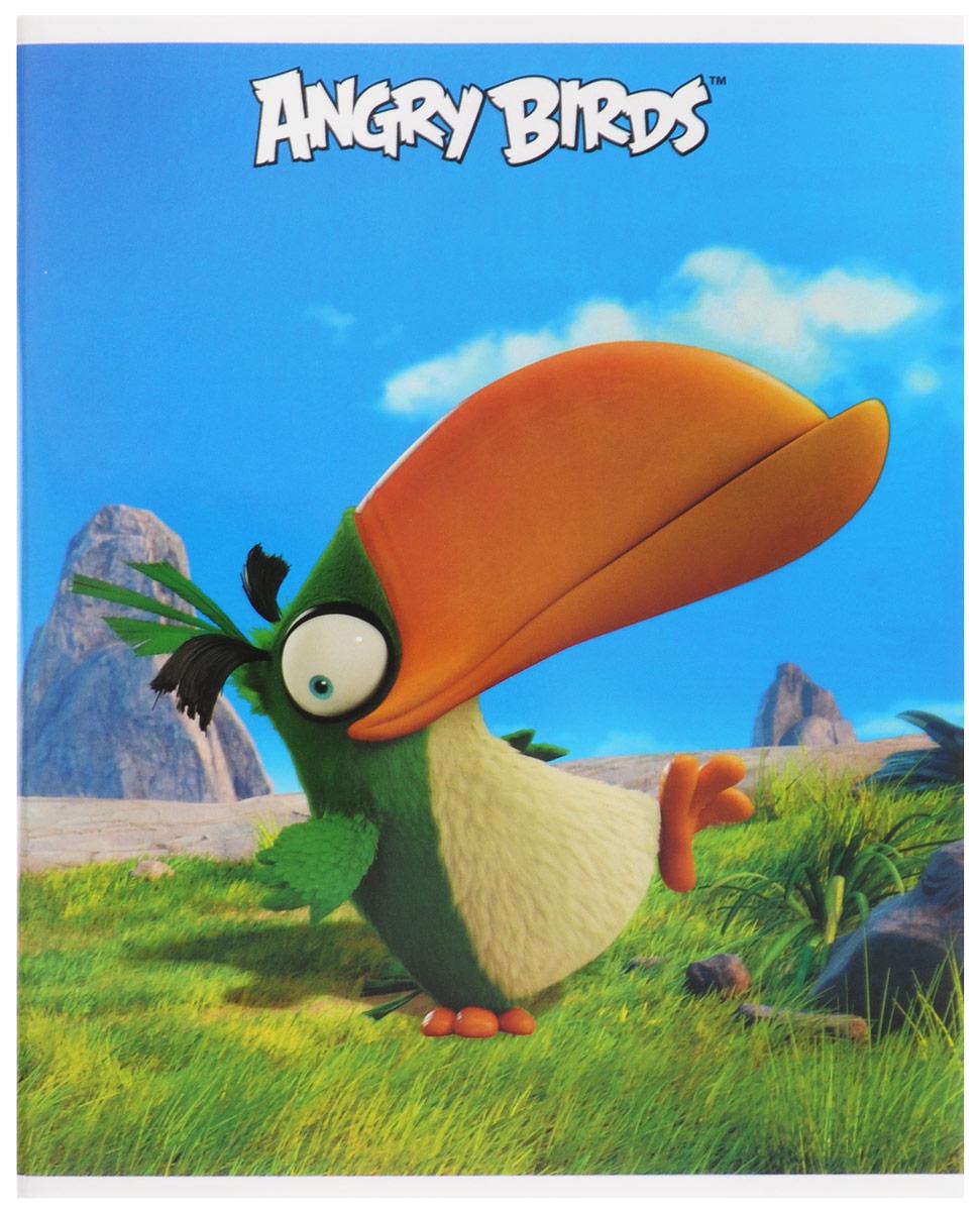 Hatber Тетрадь Хэл 48 листов в клетку48Т5В1_15313Тетрадь Hatber Хэл отлично подойдет для занятий школьнику, студенту, а также для различных записей. Обложка, выполненная из плотного картона, позволит сохранить тетрадь в аккуратном состоянии на протяжении всего времени использования. Обложка оформлена изображением тукана Хэла из известной игры Angry Birds. Внутренний блок тетради, соединенный двумя металлическими скрепками, состоит из 48 листов белой бумаги. Стандартная линовка в клетку голубого цвета дополнена полями, совпадающими с лицевой и оборотной стороны листа. В верхнем углу каждой странички находится разделенное точками место для даты, в нижнем - пустые квадратики для номеров страниц.
