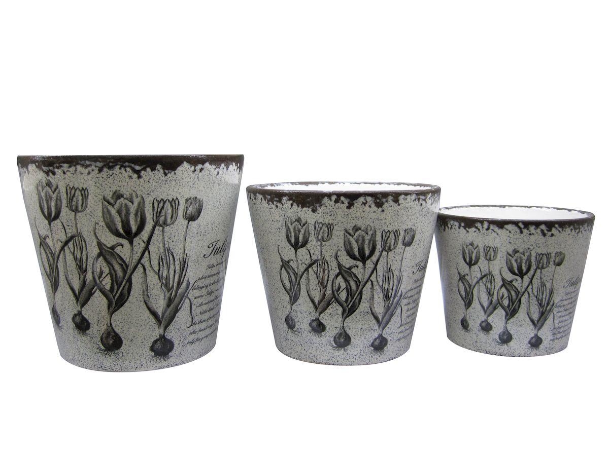 Набор горшков для цветов Miolla Тюльпан, 3 предметаC7211-5Набор горшочков из керамики, отличного качества. Хорошо будут смотреться как основа для топиариев и флористических композиций. А так же замечательно для комнатных цветов. Комплект из 3 горшков.