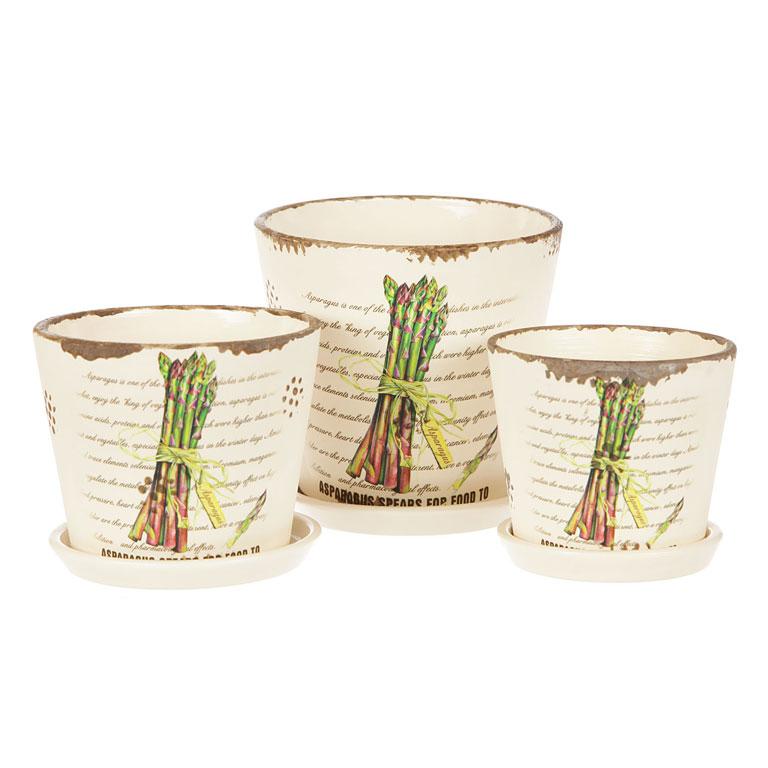Набор горшков для цветов Miolla Вероника, 3 предметаC7211-6Набор горшочков из керамики, отличного качества. Хорошо будут смотреться как основа для топиариев и флористических композиций. А так же замечательно для комнатных цветов. Комплект из 3 горшков.