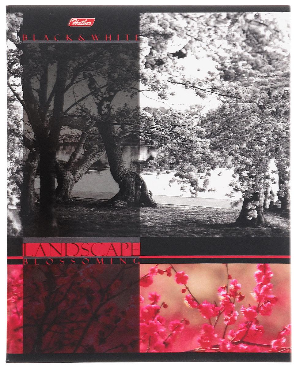 Hatber Тетрадь Цветущие пейзажи 60 листов в клетку цвет красный60Т5вмВ1_14563Тетрадь Hatber Цветущие пейзажи отлично подойдет для занятий школьнику, студенту, а также для различных записей. Обложка, выполненная из плотного картона, позволит сохранить тетрадь в аккуратном состоянии на протяжении всего времени использования. Обложка украшена изображением природы. Внутренний блок тетради, соединенный двумя металлическими скрепками, состоит из 60 листов белой бумаги. Стандартная линовка в клетку голубого цвета дополнена полями, совпадающими с лицевой и оборотной стороны листа. В верхнем углу каждой странички находится разделенное точками место для даты, в нижнем - пустые квадратики для номеров страниц.