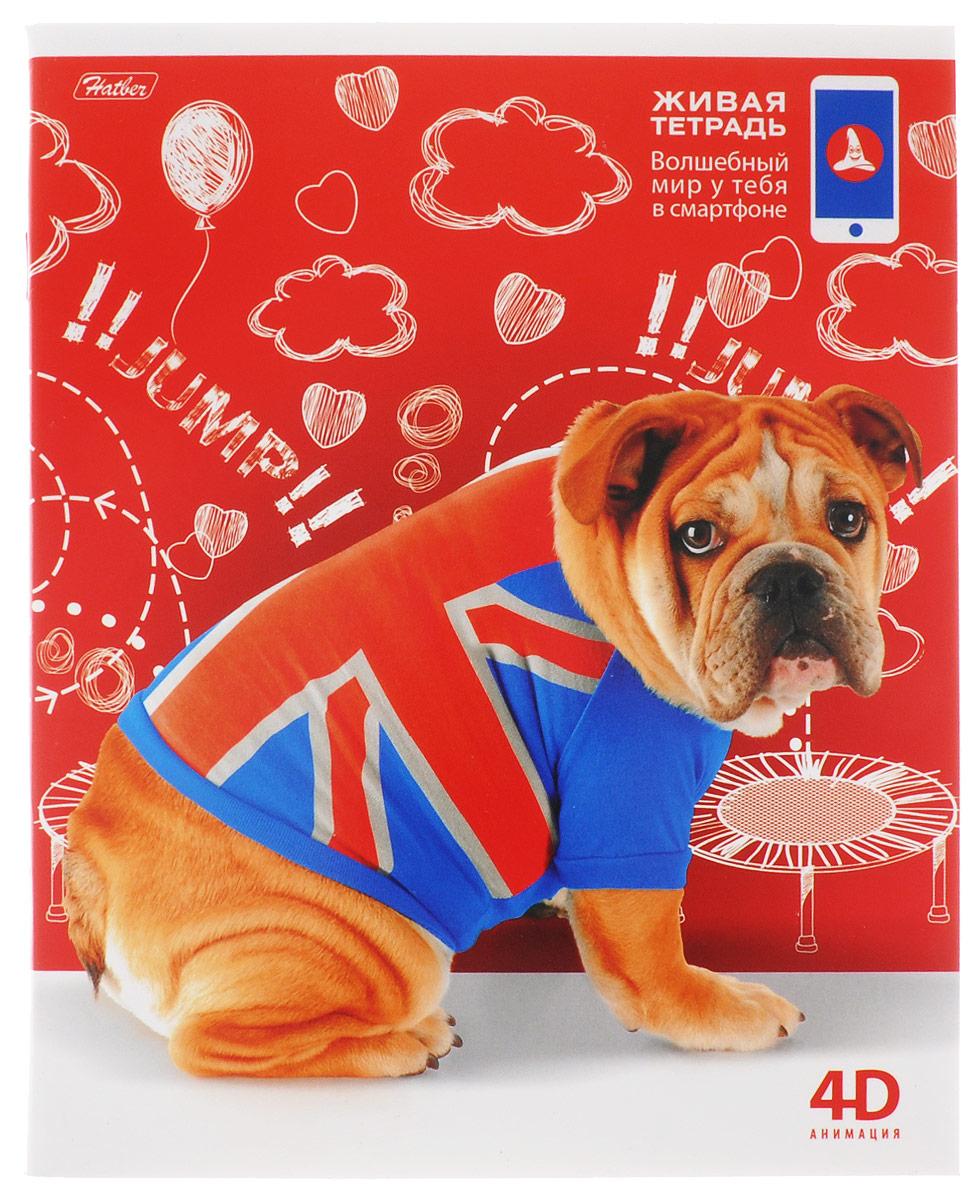 Hatber Тетрадь 4D Озорные собачки 48 листов в клетку 48Т5В1_10290