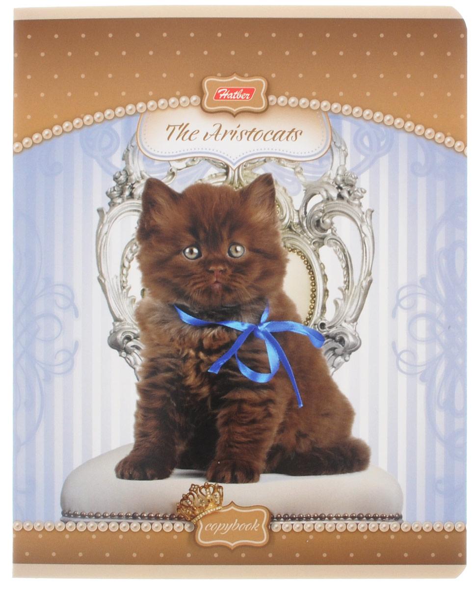 Hatber Тетрадь Коты-аристократы 48 листов в клетку цвет коричневый