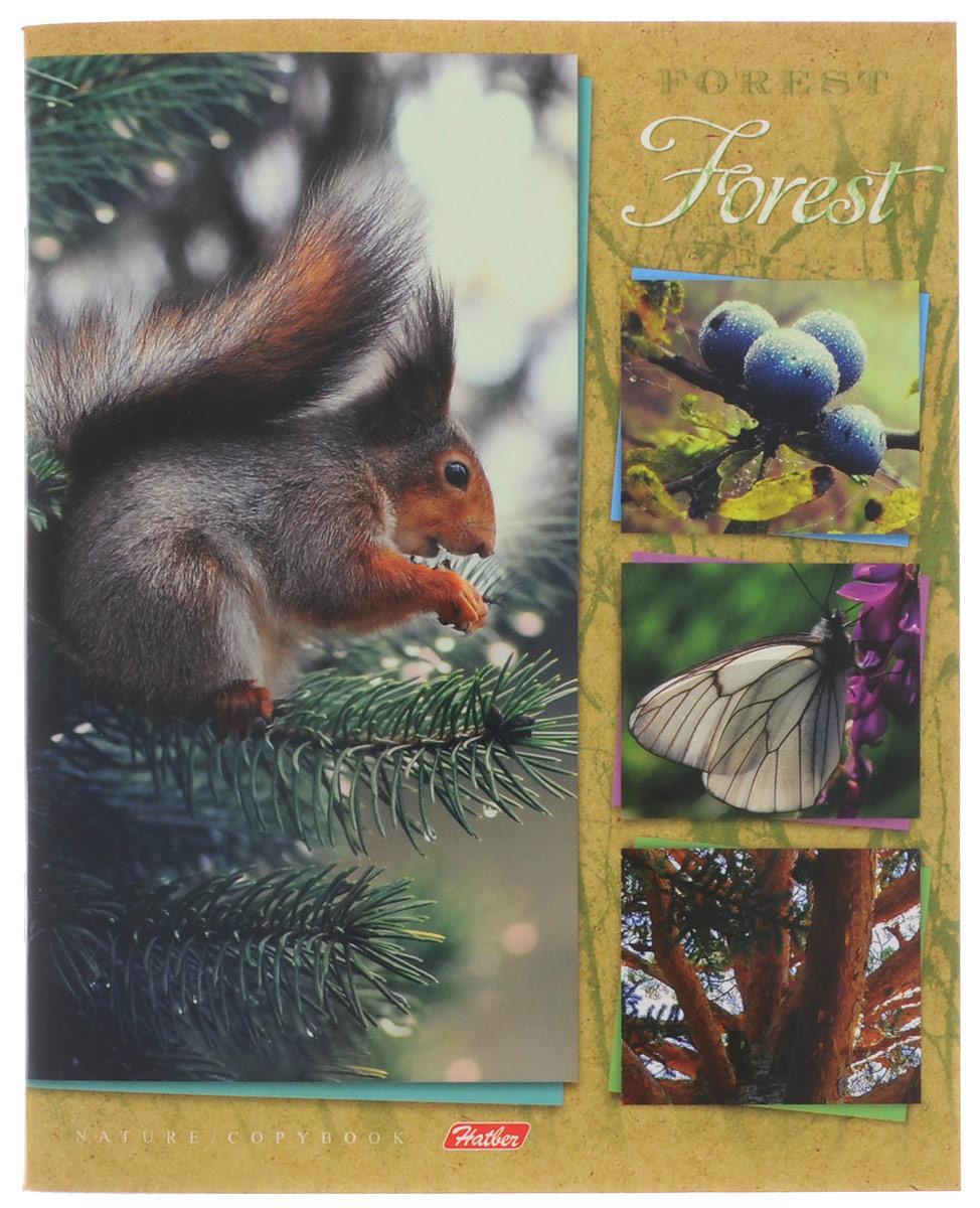 Hatber Тетрадь Душа леса 48 листов в клетку 48Т5вмВ1_14905