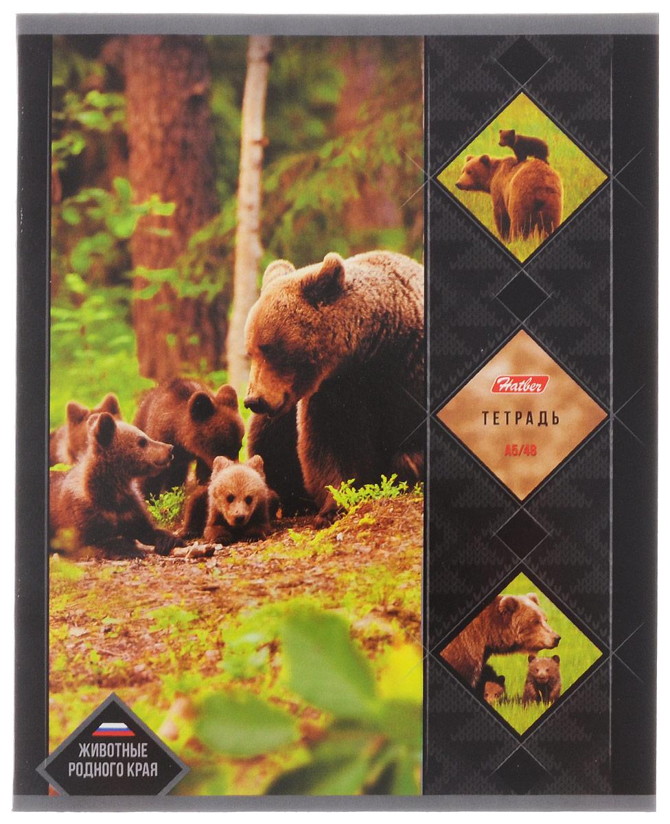 Hatber Тетрадь Животные родного края Бурый медведь 48 листов в клетку48Т5В1_14462Тетрадь Hatber Животные родного края. Бурый медведь подойдет как школьнику, так и студенту. Обложка выполнена из плотного картона, что позволит сохранить тетрадь в аккуратном состоянии на протяжении всего времени использования. Лицевая сторона оформлена изображением одного из животных, обитающих на территории Российской Федерации. Внутренний блок тетради, соединенный двумя металлическими скрепками, состоит из 48 листов белой бумаги. Стандартная линовка в клетку голубого цвета дополнена полями. В верхнем углу каждой странички находится разделенное точками место для даты, в нижнем - пустые квадратики для номеров страниц.