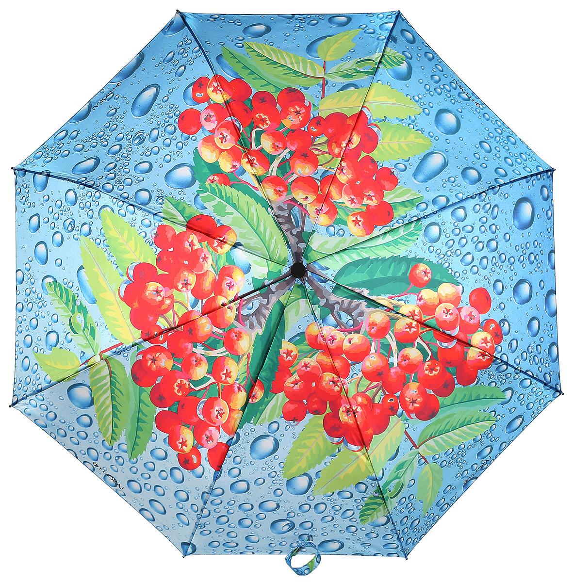 Зонт женский Flioraj, автомат, 3 сложения, цвет: голубой, красный, зеленый. 231215 FJ231215 FJЖенские зонты с нежным рисунком создадут весеннее настроение в любую непогоду! Уникальный каркас из анодированной стали, карбоновые спицы обеспечат надежную защиту даже при порывах ураганного ветра. Улучшенный механизм позволит быстро открыть, а потом сложить зонт.