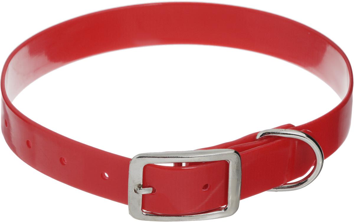 Ошейник для собак Каскад Синтетик, цвет: красный, ширина 2,5 см, обхват шеи 39-51,5 см00225511-02Ошейник для собак Каскад Синтетик изготовлен из высокотехнологичного биотана (нейлон, термопластичный полиуретан). Сверхпрочный ошейник удобен и практичен в использовании, не выгорает, устойчив к влажности, не рвется и не деформируется. Размер ошейника регулируется с помощью металлической пряжки, которая фиксируется на одном из 6 отверстий изделия. Яркий ошейник Каскад Синтетик идеально подойдет для активных собак, для прогулок на природе и охоты. Минимальный обхват шеи: 39 см. Максимальный обхват шеи: 51,5 см. Ширина: 2,5 см.