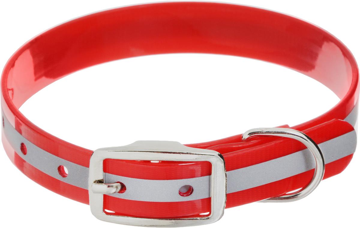 """Ошейник для собак Каскад """"Синтетик"""", со светоотражающей полосой, цвет: красный, ширина 2 см, обхват шеи 25-35 см 00220352-02"""