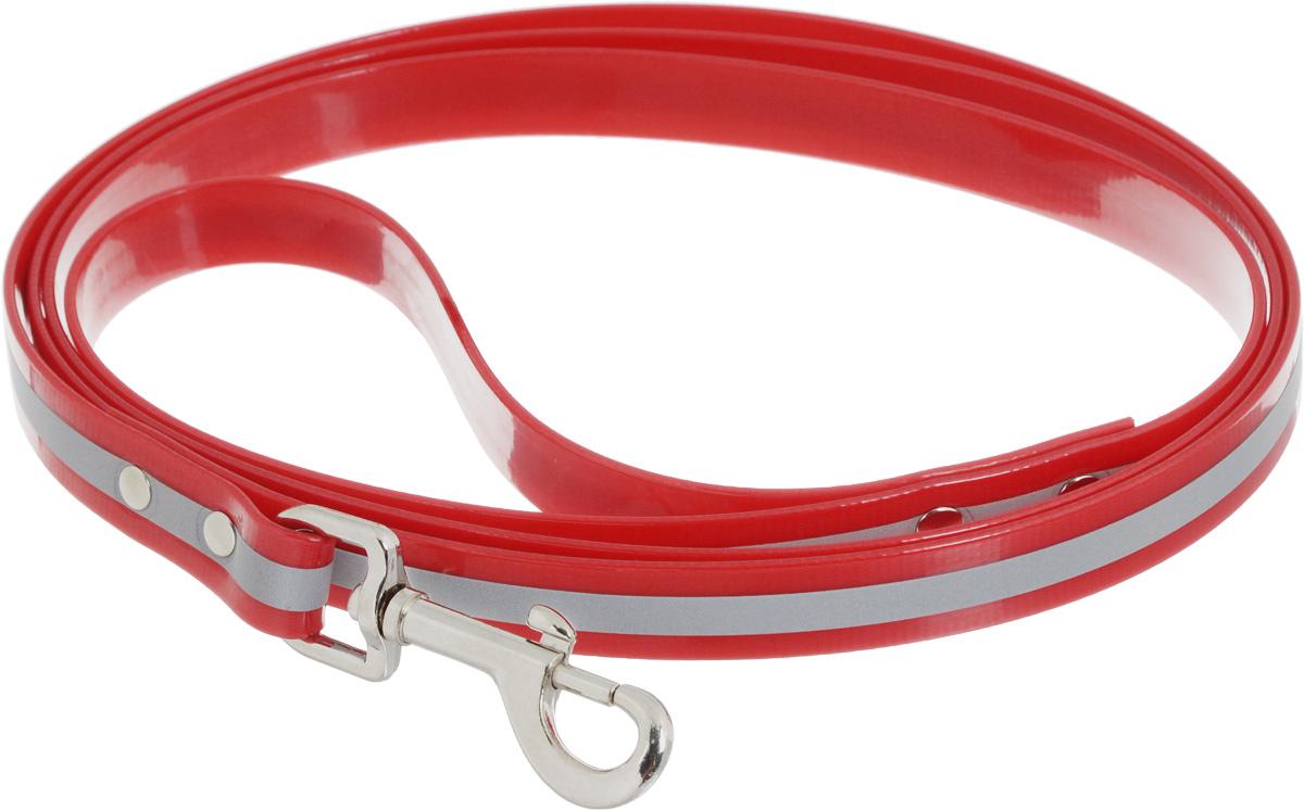 Поводок для собак Каскад Синтетик, со светоотражающей полосой, цвет: красный, ширина 2 см, длина 2 м02620202-02Поводок для собак Каскад Синтетик изготовлен из высокотехнологичного биотана (нейлон, термопластичный полиуретан) и снабжен металлическим карабином. Изделие имеет светоотражающую полоску. Поводок отличается не только исключительной надежностью и удобством, но и ярким дизайном. Он идеально подойдет для активных собак, для прогулок на природе и охоты в темное время суток. Поводок - необходимый аксессуар для собаки. Ведь в опасных ситуациях именно он способен спасти жизнь вашему любимому питомцу. Длина поводка: 2 м. Ширина поводка: 2 см.