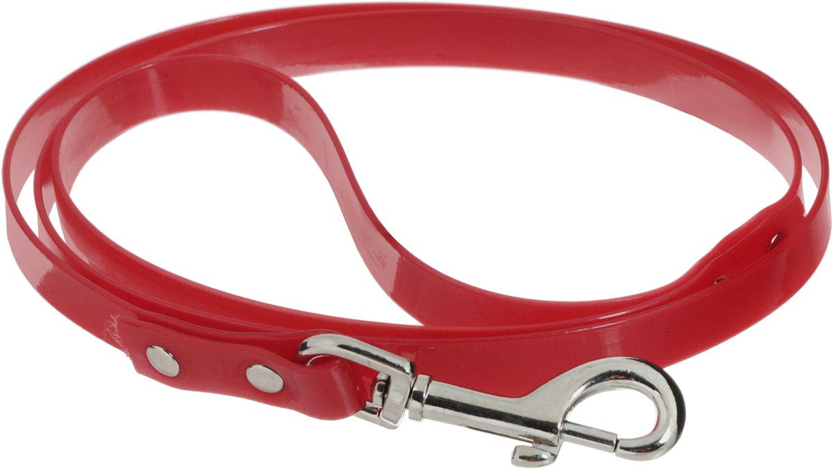 Поводок для собак Каскад Синтетик, цвет: красный, ширина 1,5 см, длина 1,2 м02615121-02Поводок для собак Каскад Синтетик изготовлен из высокотехнологичного биотана (нейлон, термопластичный полиуретан) и снабжен металлическим карабином. Поводок отличается не только исключительной надежностью и удобством, но и ярким дизайном. Он идеально подойдет для активных собак, для прогулок на природе и охоты. Поводок - необходимый аксессуар для собаки. Ведь в опасных ситуациях именно он способен спасти жизнь вашему любимому питомцу. Длина поводка: 1,2 м. Ширина поводка: 1,5 см.