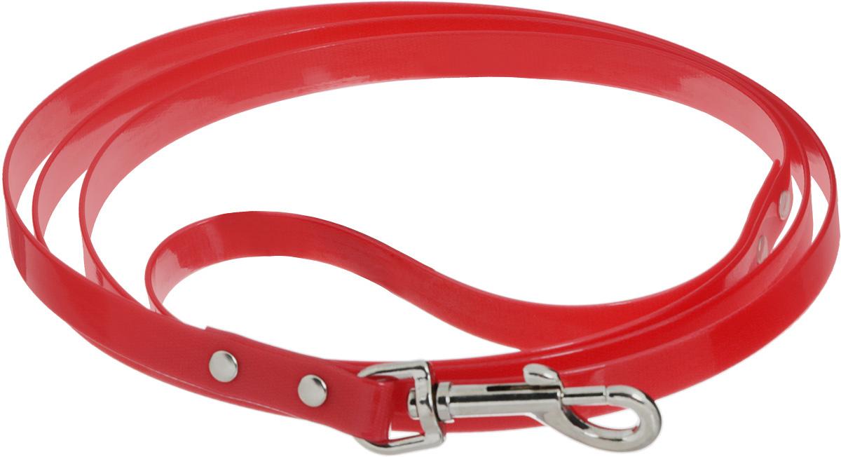 Поводок для собак Каскад Синтетик, цвет: красный, ширина 1,5 см, длина 2 м02615201-02Поводок для собак Каскад Синтетик изготовлен из высокотехнологичного биотана (нейлон, термопластичный полиуретан) и снабжен металлическим карабином. Поводок отличается не только исключительной надежностью и удобством, но и ярким дизайном. Он идеально подойдет для активных собак, для прогулок на природе и охоты. Поводок - необходимый аксессуар для собаки. Ведь в опасных ситуациях именно он способен спасти жизнь вашему любимому питомцу. Длина поводка: 2 м. Ширина поводка: 1,5 см.