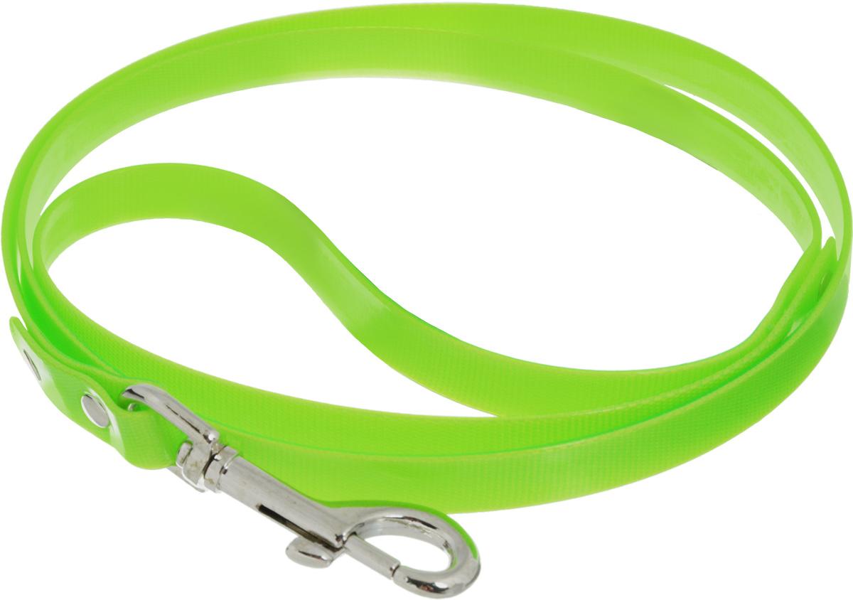 Поводок для собак Каскад Синтетик, цвет: салатовый, ширина 2 см, длина 1,2 м02620121-05Поводок для собак Каскад Синтетик изготовлен из высокотехнологичного биотана (нейлон, термопластичный полиуретан) и снабжен металлическим карабином. Поводок отличается не только исключительной надежностью и удобством, но и ярким дизайном. Он идеально подойдет для активных собак, для прогулок на природе и охоты. Поводок - необходимый аксессуар для собаки. Ведь в опасных ситуациях именно он способен спасти жизнь вашему любимому питомцу. Длина поводка: 1,2 м. Ширина поводка: 2 см.