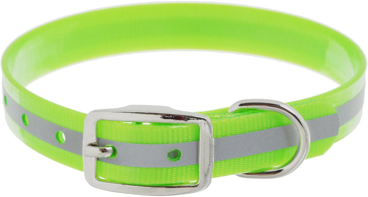 """Ошейник для собак Каскад """"Синтетик"""", со светоотражающей полосой, цвет: салатовый, ширина 2,5 см, обхват шеи 39-51,5 см 00225512-05"""