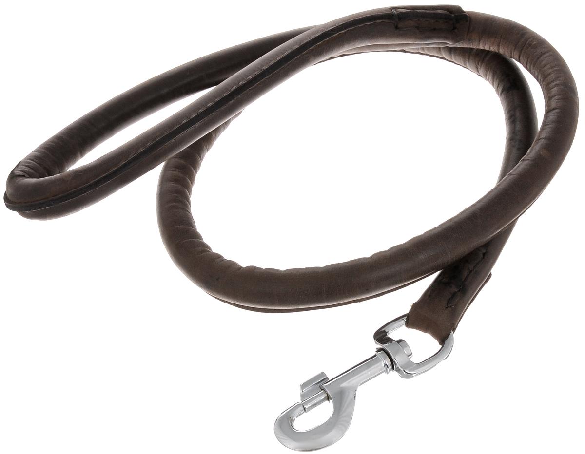 Поводок для собак Каскад Элита, ширина 1,4 см, длина 1 м02014002кПоводок для собак Каскад Элита изготовлен из кожи и снабжен металлическим карабином. Поводок отличается не только исключительной надежностью и удобством, но и ярким дизайном. Он идеально подойдет для активных собак, для прогулок на природе и охоты. Поводок - необходимый аксессуар для собаки. Ведь в опасных ситуациях именно он способен спасти жизнь вашему любимому питомцу. Длина поводка: 1 м. Ширина поводка: 1,4 см.