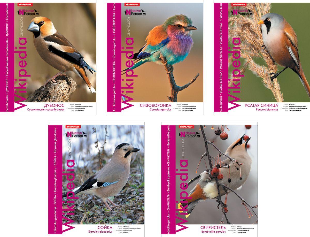 Erich Krause Тетрадь Wikipedia Птицы 48 листов в линейку37592Тетрадь 48 листов. Обложка: картон мелованный 170 г/м2 Блок:бумага офсетная 55 г/м2 .