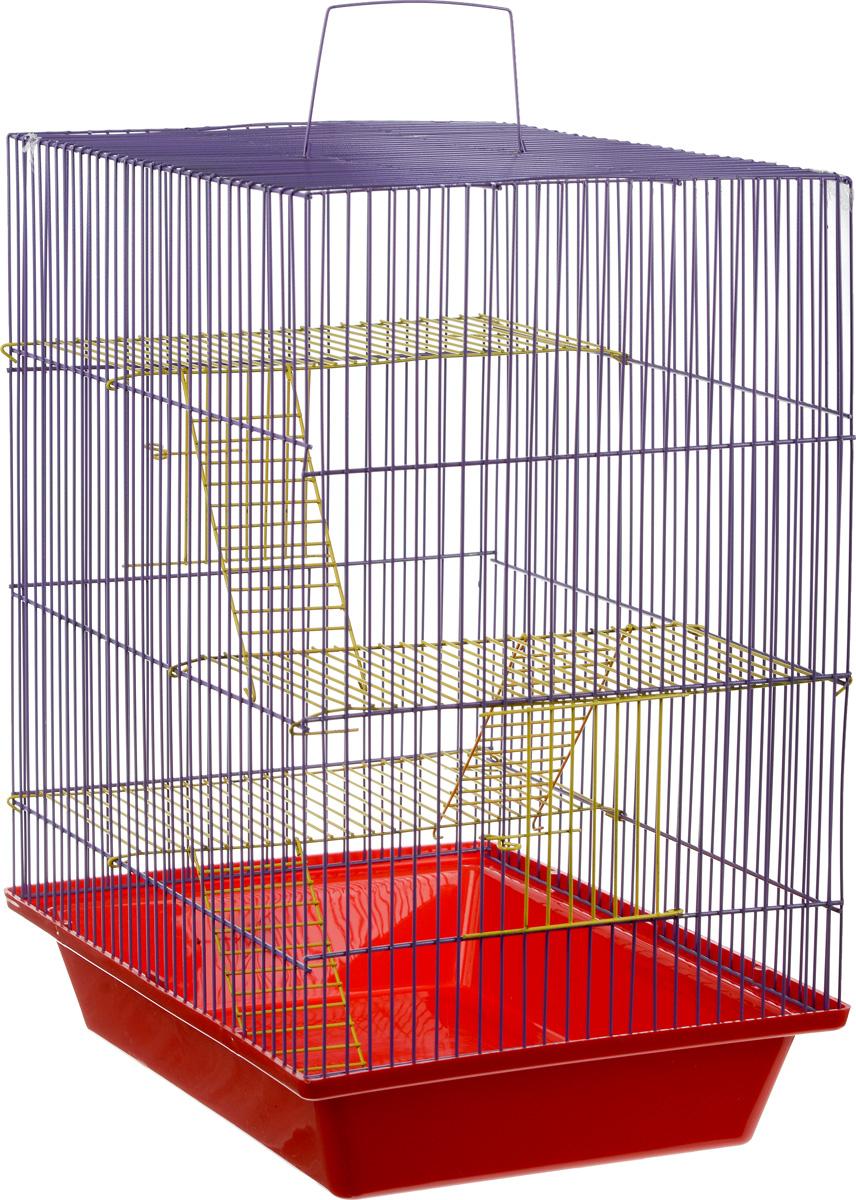 Клетка для грызунов ЗооМарк Гризли, 4-этажная, цвет: красный поддон, фиолетовая решетка, желтые этажи, 41 х 30 х 50 см. 240ж240ж_красный, фиолетовыйКлетка ЗооМарк Гризли, выполненная из полипропилена и металла, подходит для мелких грызунов. Изделие четырехэтажное. Клетка имеет яркий поддон, удобна в использовании и легко чистится. Сверху имеется ручка для переноски. Такая клетка станет уединенным личным пространством и уютным домиком для маленького грызуна.