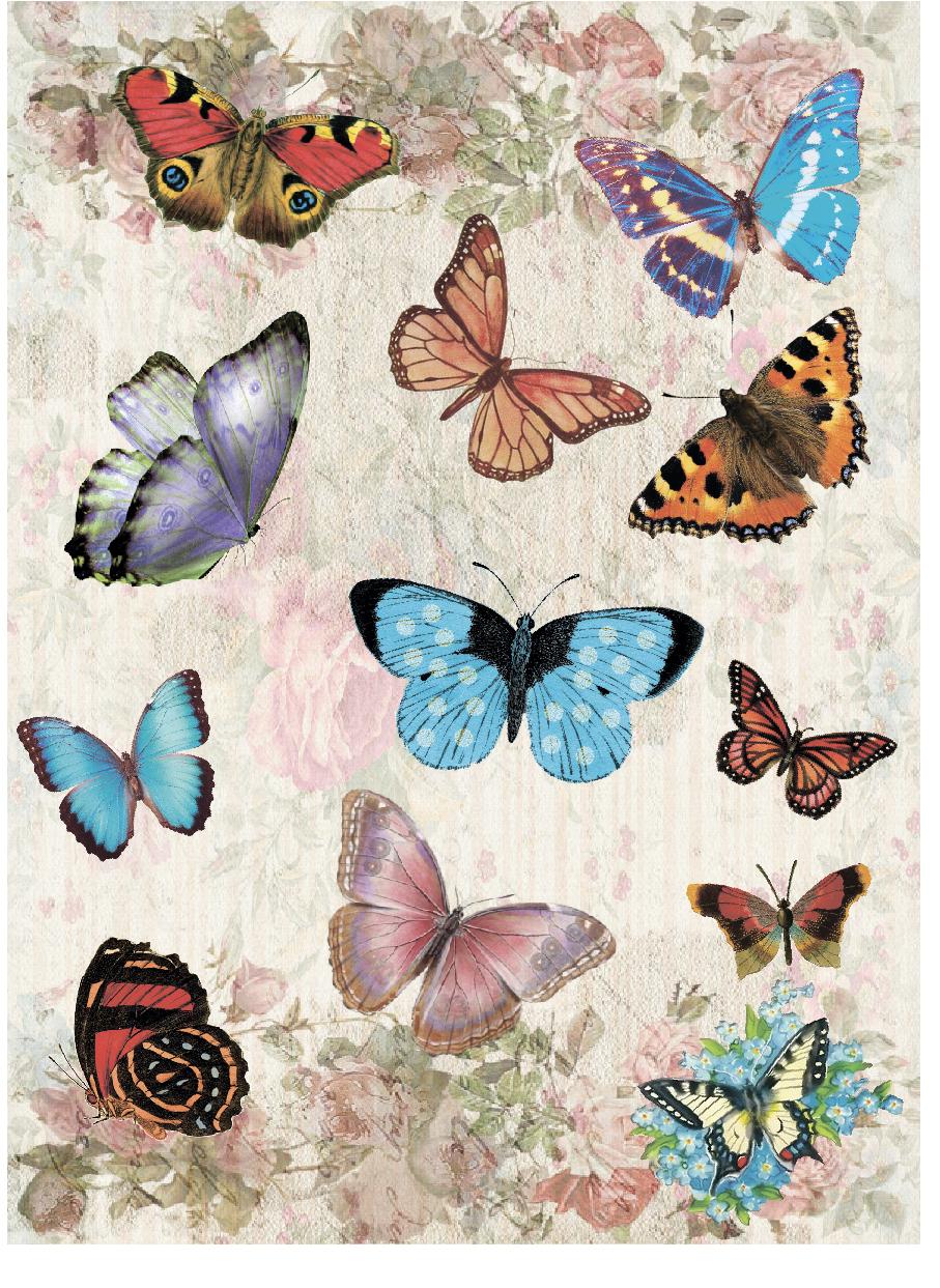 Рисовая бумага для декупажа Craft Premier Мир бабочек, А3CPD0586Плотность бумаги 25 г/м