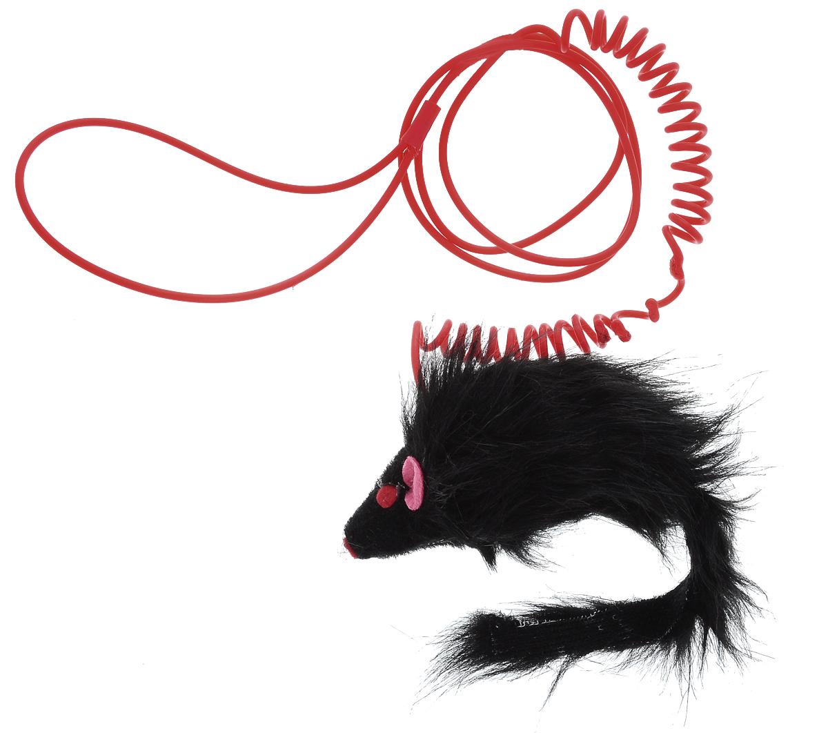 Игрушка для кошек Каскад Мышь, на пружине, цвет: черный, длина 9 см27754640Игрушка для кошек Каскад Мышь изготовлена из искусственного меха, фетра и пластика. Играя с этой забавной игрушкой, маленькие котята развиваются физически, а взрослые кошки и коты поддерживают свой мышечный тонус. Изделие выполнено в виде мыши. Эта интересная и очень необычная игрушка станет любимой у вашей кошки, за ней она весело проведет ни один час. Также игрушка помогает удалить зубной камень и улучшить здоровье зубов. Размер игрушки: 9 х 3,5 х 5 см.