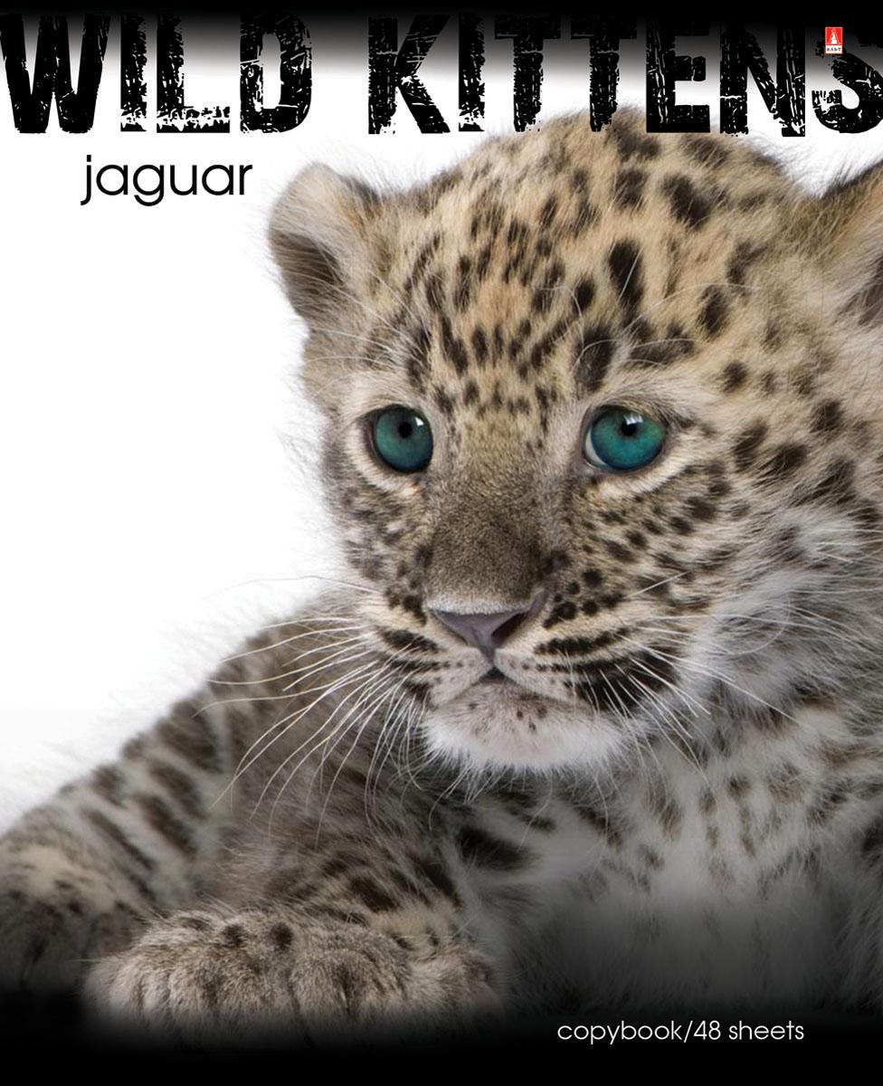 Альт Тетрадь Jaguar 48 листов в клетку7-48-188Тетрадь Альт Jaguar подойдет студенту и школьнику. Любимы и популярны у школьников всех возрастов яркие тетради с представителями живой природы. Новая серия тетрадей посвящена хищным животным из семейства кошачьих - опасным и одновременно прекрасным. Красочная обложка тетради с закругленными углами выполнена из картона и дополнена изображением ягуара. Внутренний блок тетради состоит из 48 листов белой бумаги, соединенных двумя металлическими скрепками. Стандартная линовка в клетку голубого цвета дополнена полями.