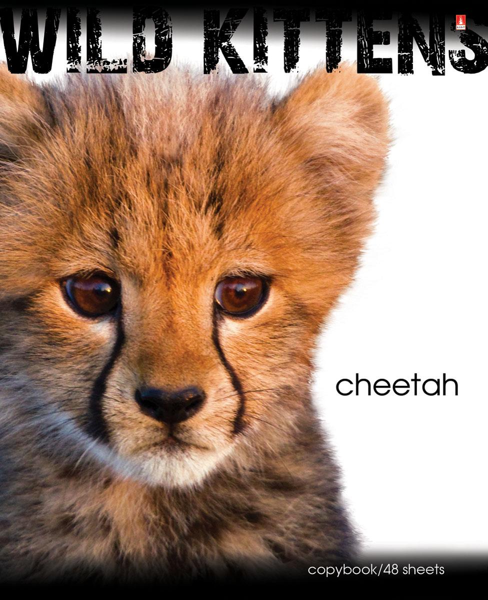 Альт Тетрадь Cheetah 48 листов в клетку7-48-188Тетрадь Альт Cheetah подойдет студенту и школьнику. Любимы и популярны у школьников всех возрастов яркие тетради с представителями живой природы. Новая серия тетрадей посвящена хищным животным из семейства кошачьих - опасным и одновременно прекрасным. Красочная обложка тетради с закругленными углами выполнена из картона и дополнена изображением гепарда. Внутренний блок тетради состоит из 48 листов белой бумаги, соединенных двумя металлическими скрепками. Стандартная линовка в клетку голубого цвета дополнена полями.