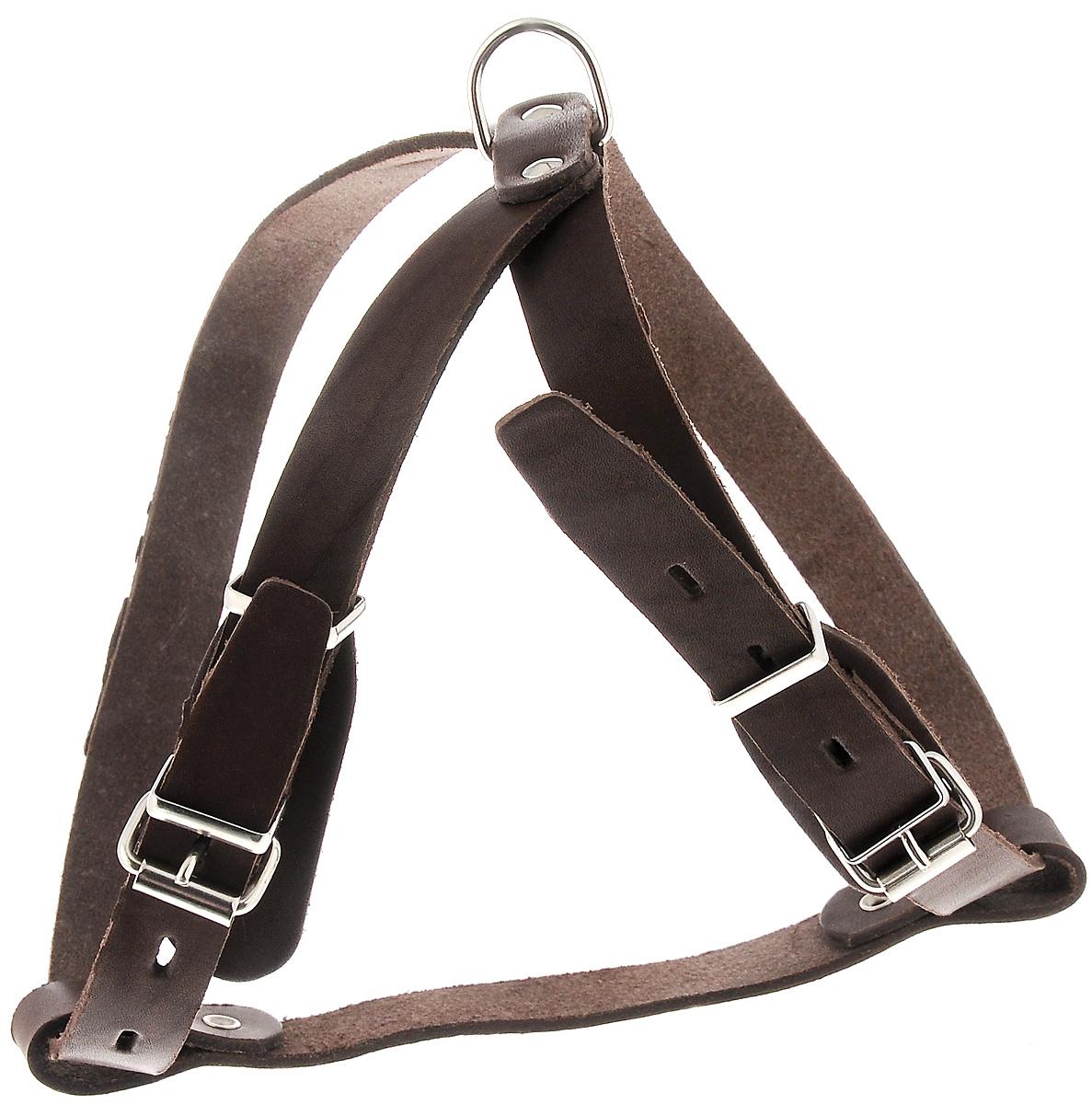 Шлейка для собак Каскад Классика, цвет: темно-коричневый, ширина 2 см, обхват груди 51-59 см01002011кШлейка Каскад Классика, изготовленная из и натуральной кожи, подходит для собак средних пород. Крепкие металлические элементы делают ее надежной и долговечной. Шлейка - это альтернатива ошейнику. Правильно подобранная шлейка не стесняет движения питомца, не натирает кожу, поэтому животное чувствует себя в ней уверенно и комфортно. Изделие отличается высоким качеством, удобством и универсальностью. Размер регулируется при помощи пряжек, зафиксированных в одном из 4 отверстий. Обхват шеи: 45-53 см. Обхват груди: 51-59 см. Ширина шлейки: 2 см.