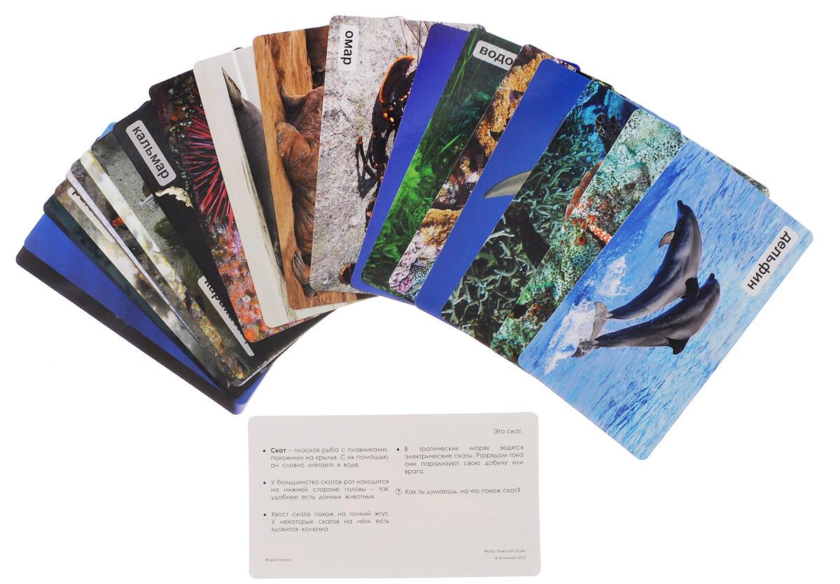 Умница Обучающие карточки Живой океан