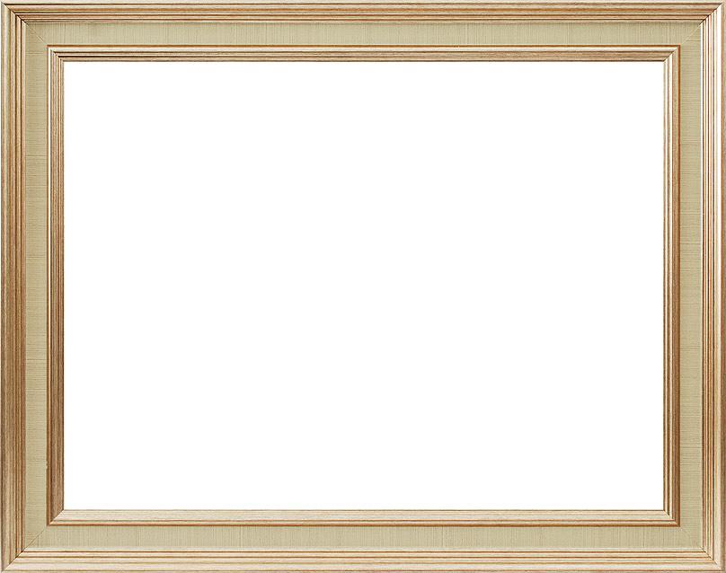 Багетная рама Белоснежка Clara, 40х50 см, цвет: золотой2090-BB