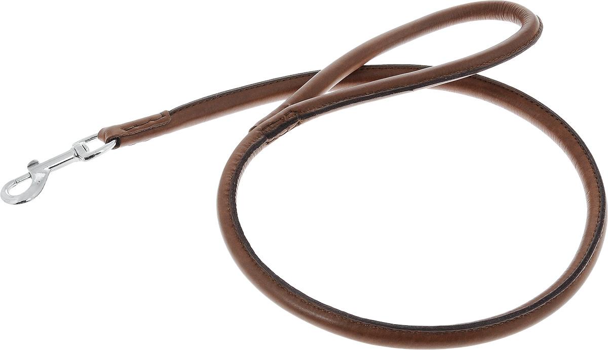 Поводок для собак Каскад Элита, ширина 1 см, длина 100 см02010002к_коричневыйПоводок для собак Каскад Элита изготовлен из натуральной кожи и снабжен металлическим карабином. Поводок отличается не только исключительной надежностью и удобством, но и оригинальным дизайном. Он идеально подойдет для активных собак, для прогулок на природе и охоты. Поводок - необходимый аксессуар для собаки. Ведь в опасных ситуациях именно он способен спасти жизнь вашему любимому питомцу. Длина поводка: 1 см. Ширина поводка: 100 см.